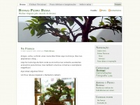 pedrobonsai.wordpress.com