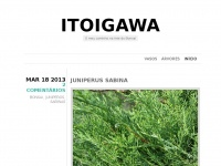 itoigawa.wordpress.com