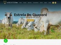 estreladoguapore.com.br