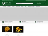 bvorchids.com.br
