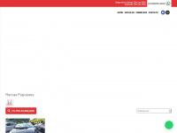 carzine.com.br