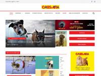 caes-e-cia.com.br