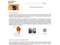 calculosrenais.com.br