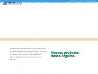 minasligas.com.br