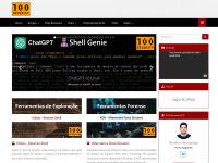 100security.com.br
