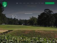 campinasgolfe.com.br