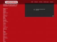 carvidros.com.br