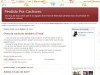 perdidopcachorro.blogspot.com