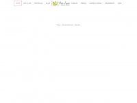 vivieluiz.com.br
