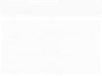castorsuspensoes.com.br