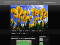 manasbrecho.blogspot.com