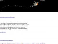 catedralcampinas.com.br