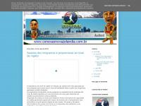 conexaonovazelandia.blogspot.com