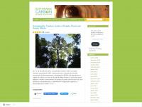 carbonosustentavelbrasil.wordpress.com