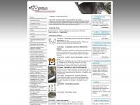 chinchilas.com.br