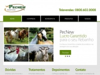 pecnew.com.br