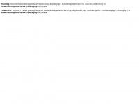 Dezengenharia.com.br