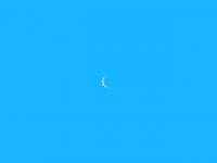 hnsdd.com.br