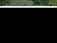 circuitodasfrutas.com.br