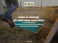 honeystinger.com.br