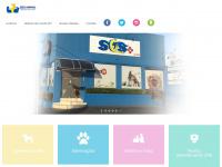clinicasosanimal.com.br