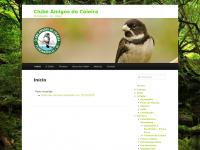 clubeamigosdocoleira.com.br