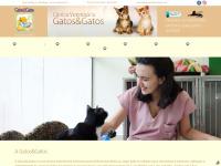 gatosegatos.com.br