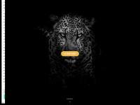 coisasdeoncinha.com.br