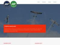 aviashow.com.br
