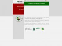 forexsa.com.br