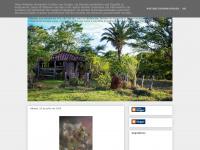priciladesa.blogspot.com