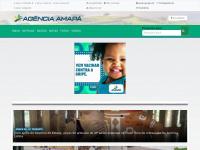 agenciaamapa.com.br