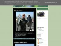 coiteam.blogspot.com