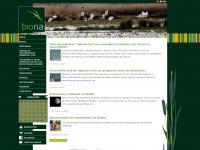 bioria.com