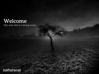 naturacai.com.br