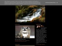 abbphotos.blogspot.com