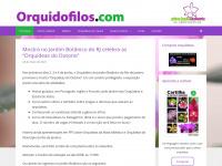 Orquidofilos.com – Orquídeas, fotos e como cultivar