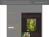 cameeandfriends.blogspot.com