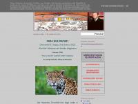 clerisvaldobchagas.blogspot.com