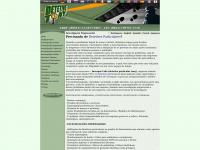 Detetivetony.com.br - DETETIVE PARTICULAR TONY- AGENCIA DE DETETIVES
