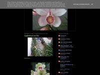 carlos-secretgardenmysoulisgreen.blogspot.com