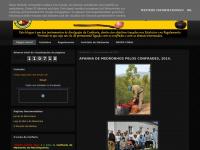 confrariadomedronhomonchique.blogspot.com