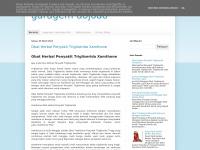 garagemdojoao.blogspot.com