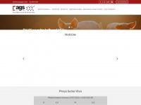 ags.com.br
