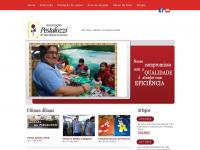 pestalozzismi.com.br