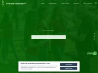 Direcionapanfletagem.com.br