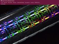 crowndobrasil.com.br