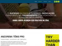 anzorenatenis.com