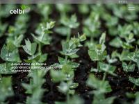 Celulose Beira Industrial (Celbi) SA