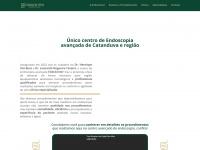 endocenter.com.br